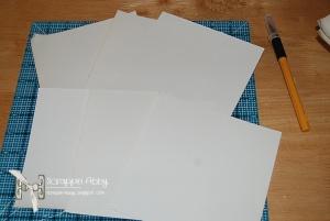 Step 1 Pic 4