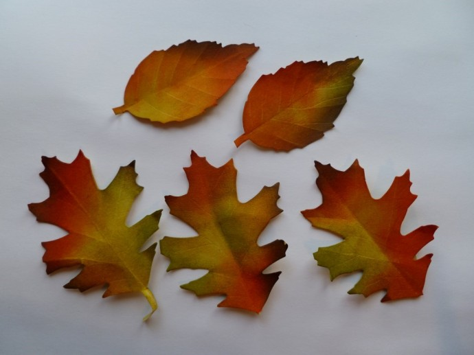 Autumn Glory Canvas M (11) (Medium)